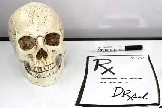 Skull Replica