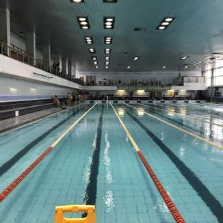 РЕПОРТАЖ соревнования по плаванию среди московских школ глухих