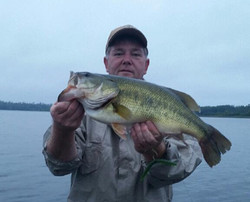Randy caught this 5.6lb pig in MN