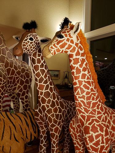 Baby Giraffes x 2