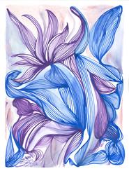 Transcendance poulpo-florale