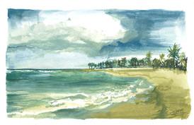 Playa Dorada RD #3