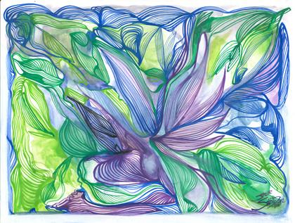 Pixilation du colibri