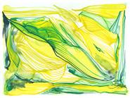 Dégât citron-limette