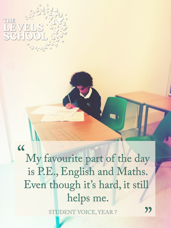 Student Voice, Year 7