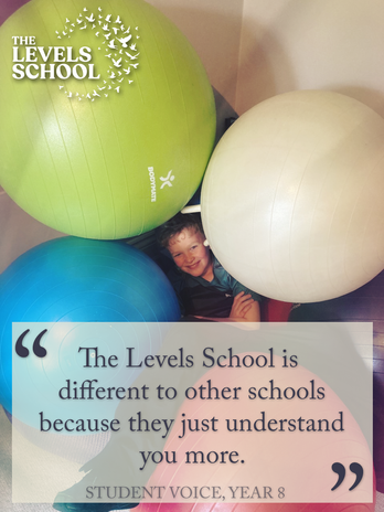 Student Voice, Year 8