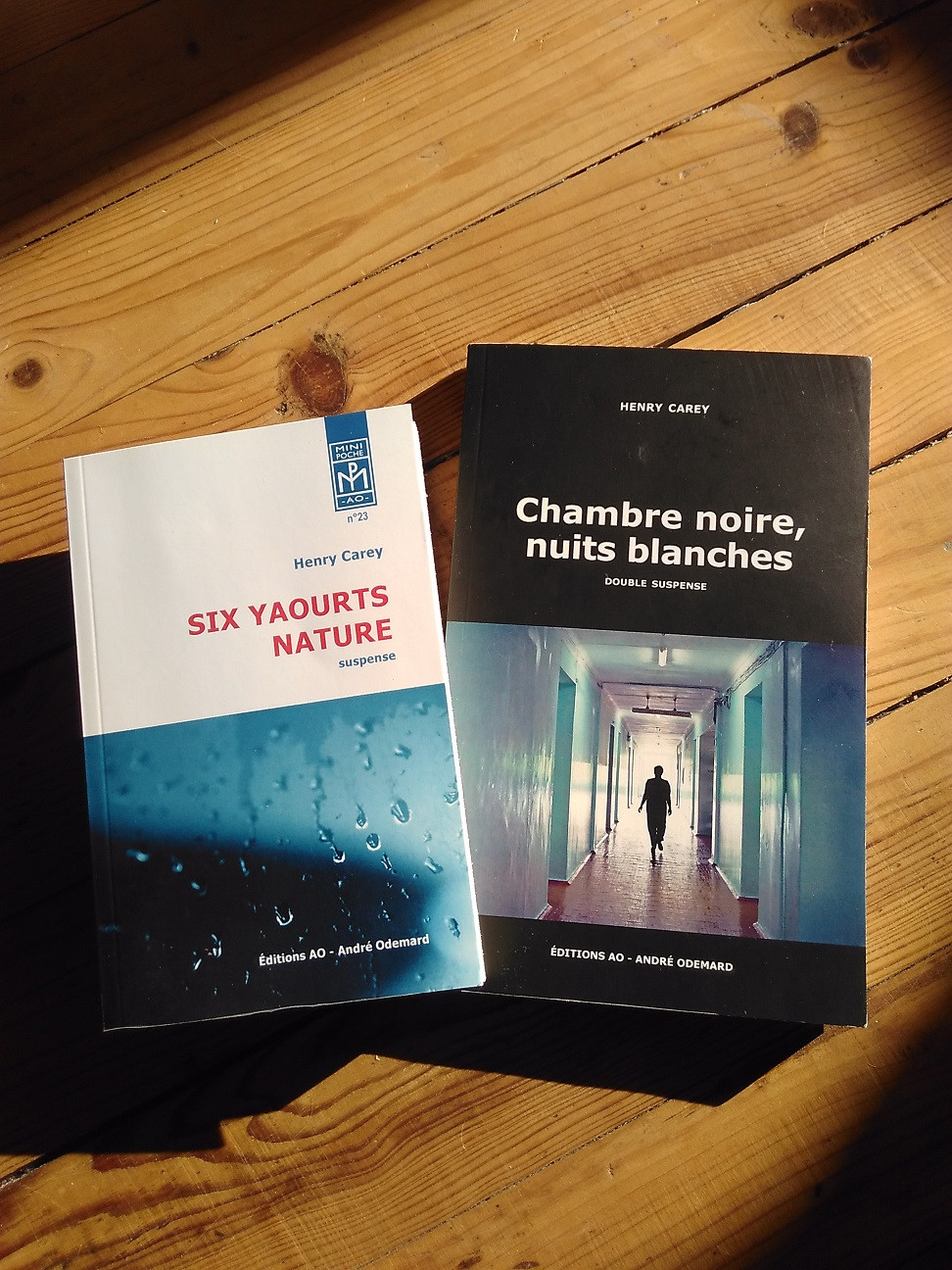 Six yaourts nature et Chambre noire, nuits blanches - roman d'Henry Carey