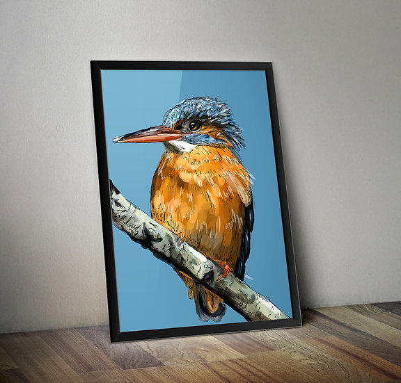 Kingfisher Giclée Prints