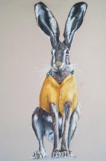 Bercley Hare - Original Drawing