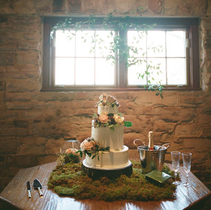 Organic Cake Table