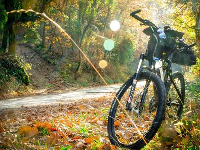 Cuida y limpia tu bicicleta