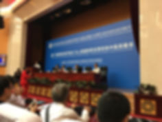 conferenza pechino