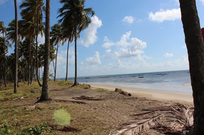 Praia do Paiva fotos