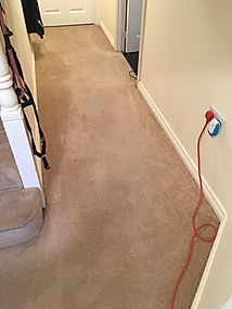 Carpet stain removal Northamptonshire Roade