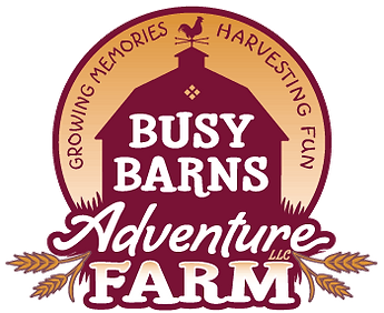Busy-Barns-Logo-with-gradient.png