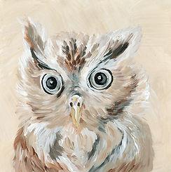 CIN-ANIM-owl.jpg