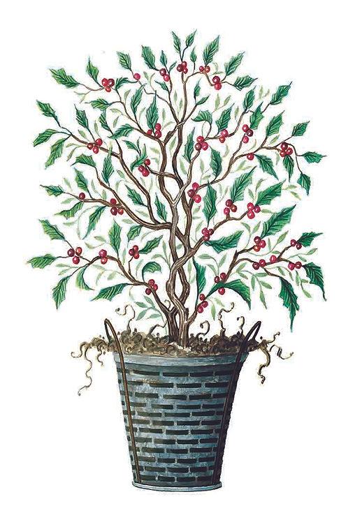 Christmas Tree-Holly