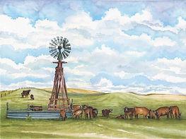 CIN-pasture-cows.jpg