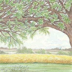 Tree triplicate-1.jpg