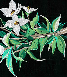 White magnolia-1.jpg