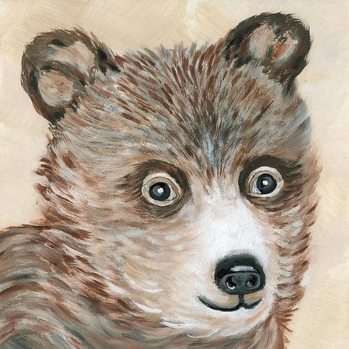 """Brody the Bear"""