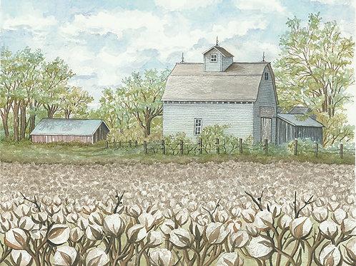 Cotton Field and Farm