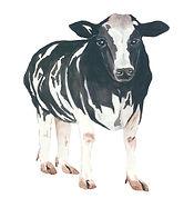 Cow-edited.jpg