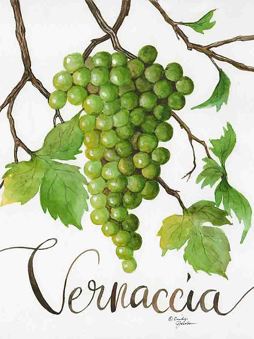 """Vernaccia: Grapes of Italy Wine Country""."