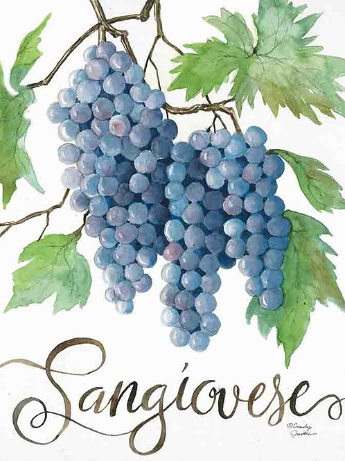 """""""Sangiovese: Grapes of Italy Wine Country"""""""