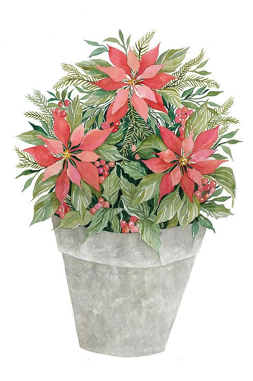 """Poinsettias in Gray Pot"""