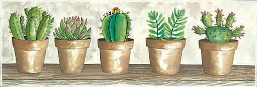 CIN-succulent pots-clay pots copy.jpg
