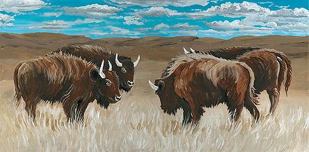 CIN-bison-2.jpg