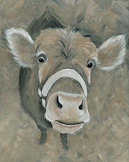 CIN-cow-big eyes.jpg