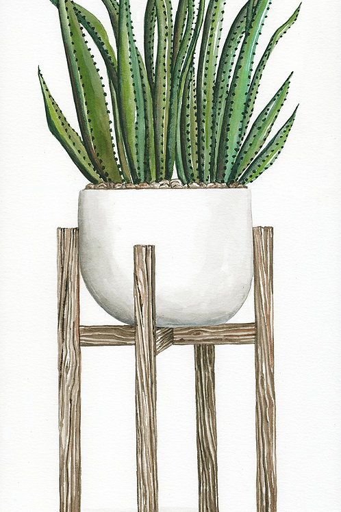 Standing Succulents Pot III