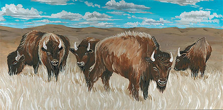 CIN-bison-1.jpg