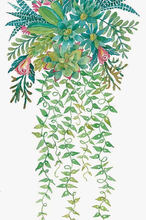 """Succulent Spray: Roses & Zebras""."
