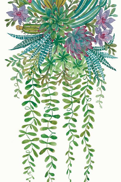 """""""Succulent Spray: Cactus""""."""