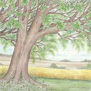 Tree triplicate-3.jpg