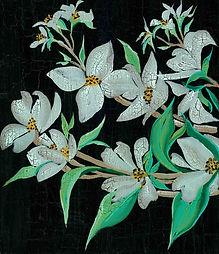 White magnolia-2.jpg