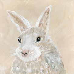 CIN-ANIM-bunny.jpg