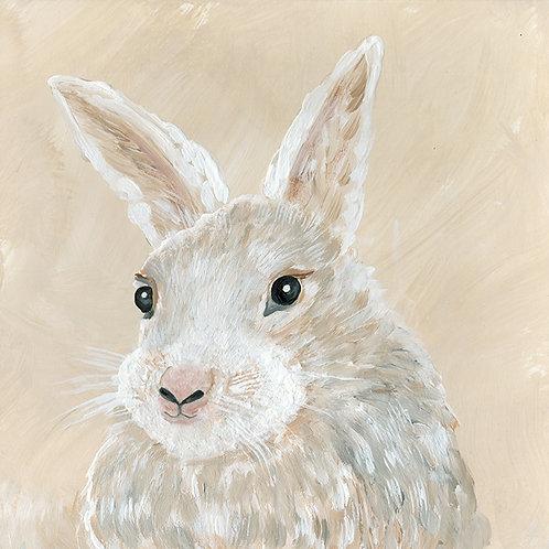 """""""Bennie the Bunny"""""""