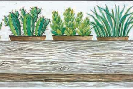 """""""Succulents Pots III"""""""