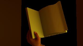 bookPageFlip_1_0002.tif