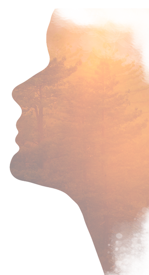 Image: silhouette of a face with a sunset image of a forest superimposed