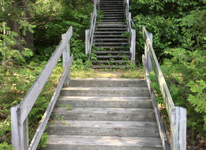 Where Will Your Stairs Lead...