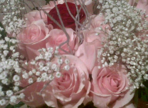 Flowers Everyday...Why Not...