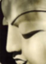 Карта Будды 14 - Все любят жизнь