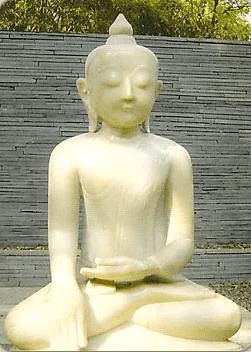 Карта Будды 36 - Путь Света