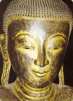 Карта Будды 7 - И в самом деле глуп
