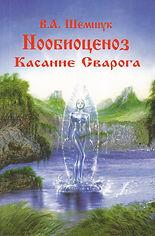 Нообиоценоз или Касание Сварога - Шемшук В.